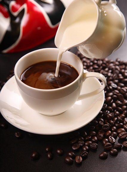 Grains de café les meilleurs de 2021