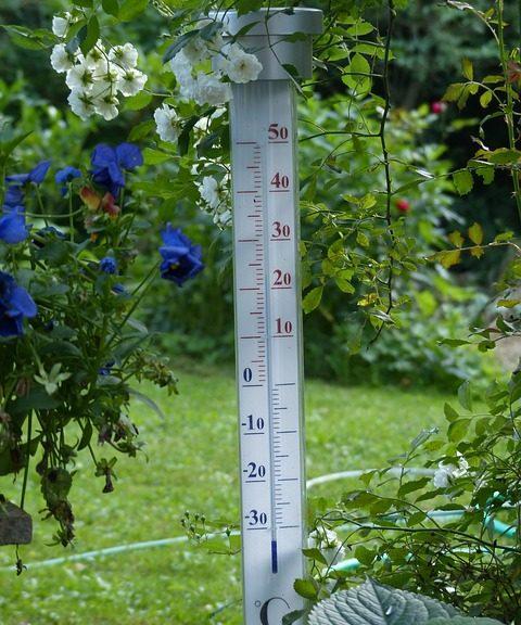 Thermomètre de jardin les meilleurs de 2019